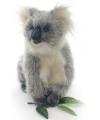 Realistische knuffel koala 23 cm