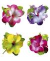 Gekleurde bloemen haarklem
